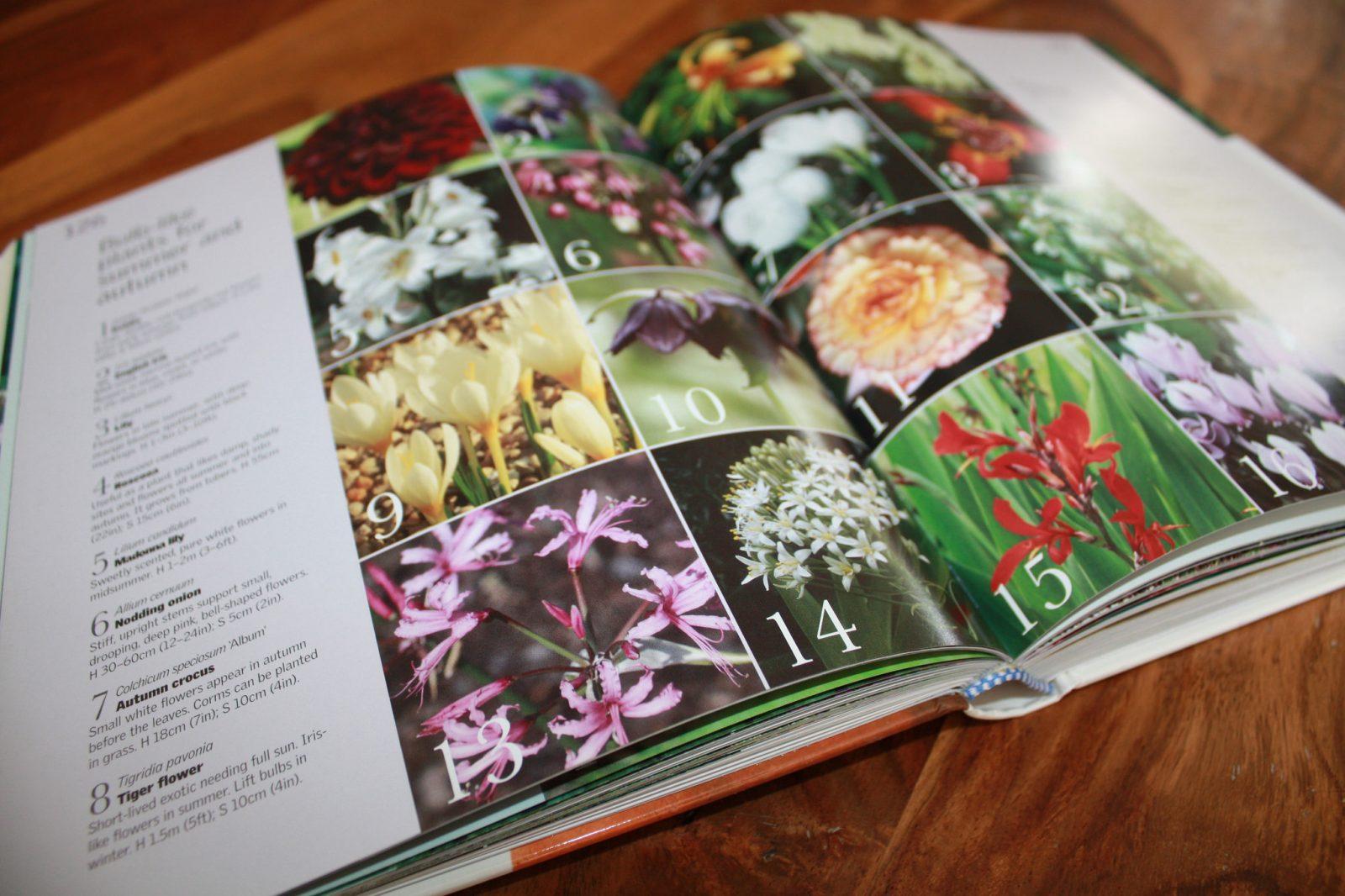 RHS - How to Garden Book